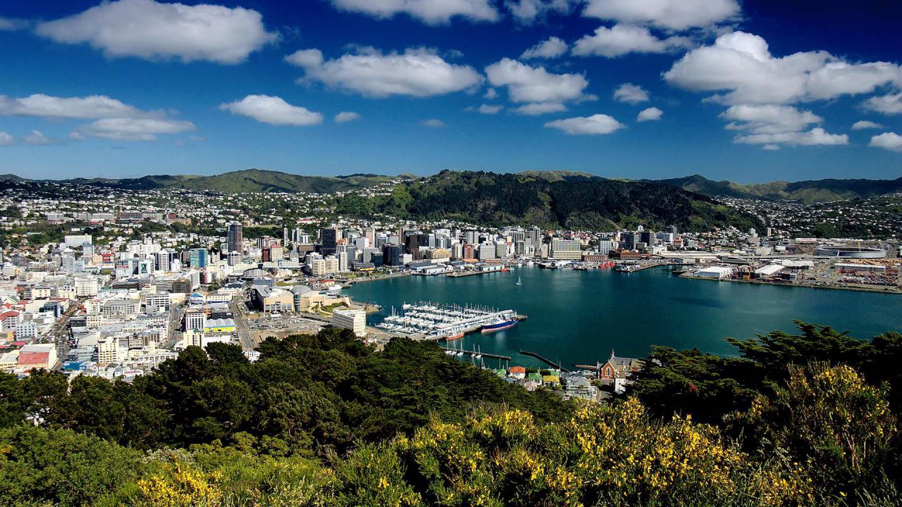 City Skyline, Wellington, New Zealand