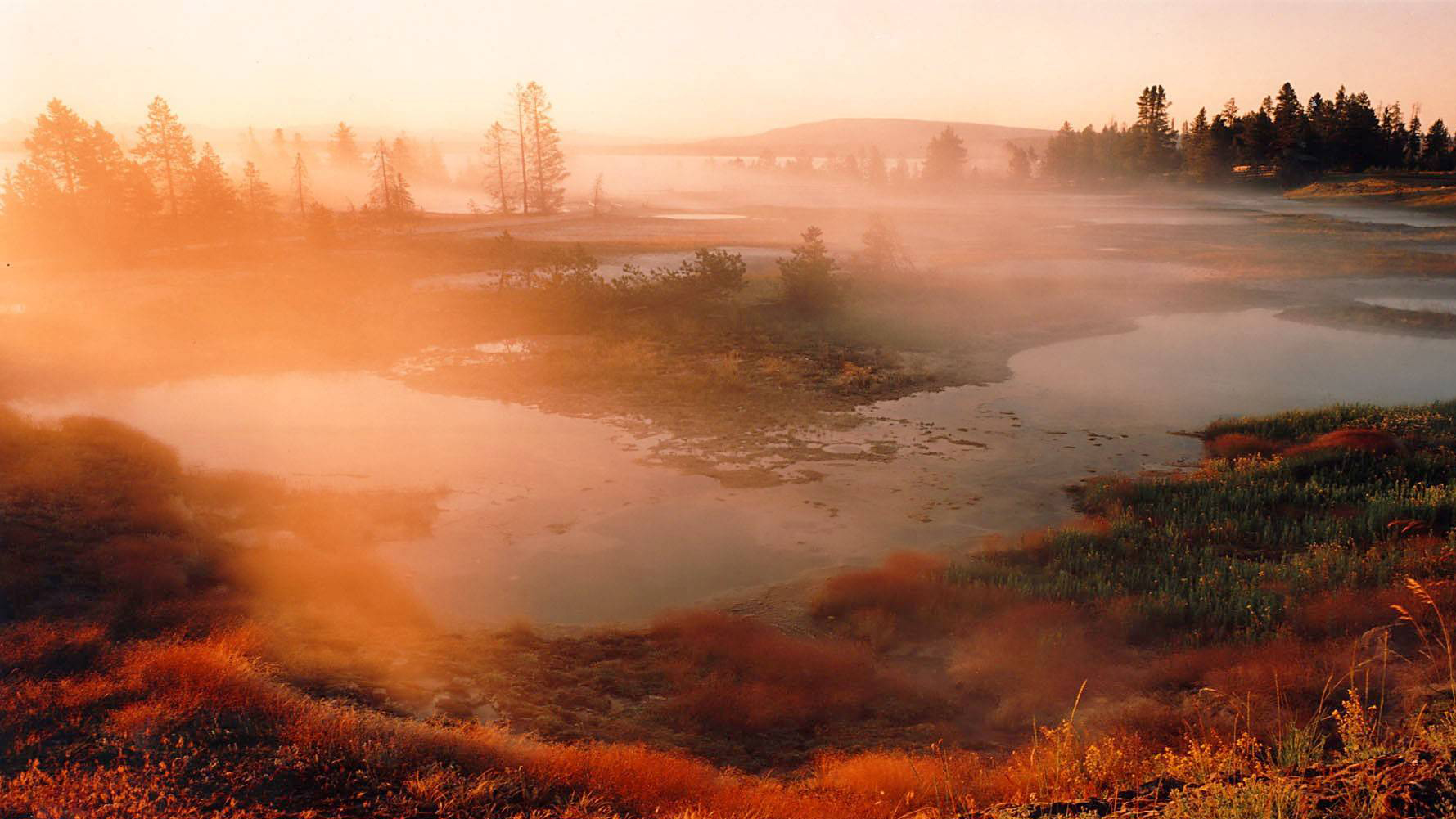 Park at Sunset, Yellowstone National Park, Wyoming, United States